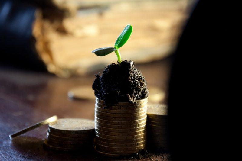 Guadagnare online Moneyfarm